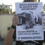 cartello manifestanti contro l'utilizzo di animali al circo