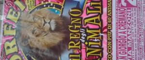 Da domani circo con 60 animali a San Giorgio